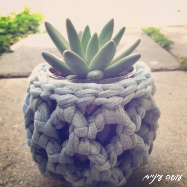 עושה עיניים - כיסוי לעציץ קטן סרוג מחוטי טריקו || OsaEinaim - Crochet T-shirt yarn flowerpot